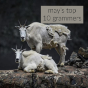 May's Top 10 Grammers